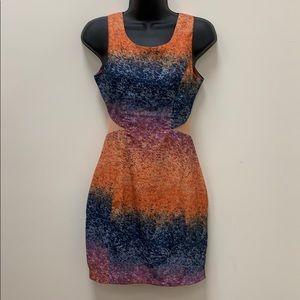 Multicolor Bodycon Dress